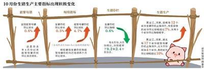 全国生猪生产进入止降回升转折期 供需矛盾有所缓解