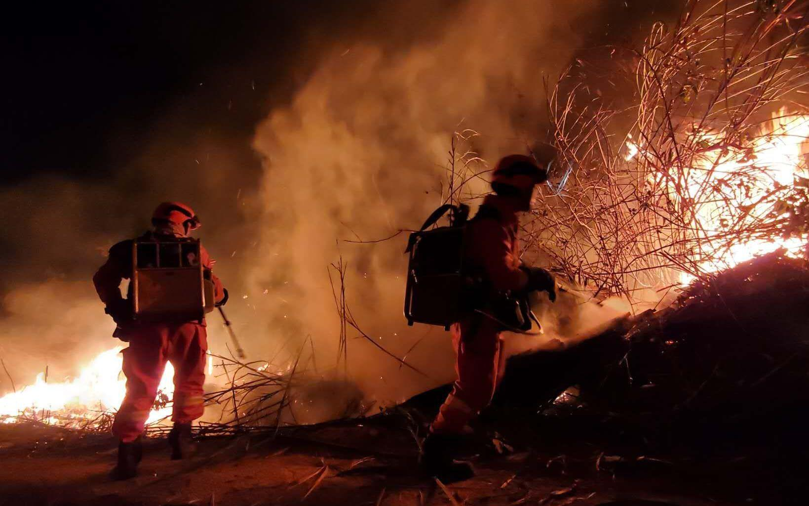 厦门突发森林火灾过火面积约250亩 目前明火已被扑灭
