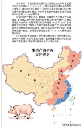 生猪生产三年方案公布 稳定明年春节市场供应