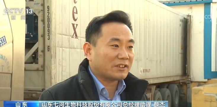 中国外贸内生动力不断增强