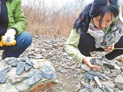 """化石爱好者北京古村寻宝 更专业的""""化石猎人""""拥有店铺"""