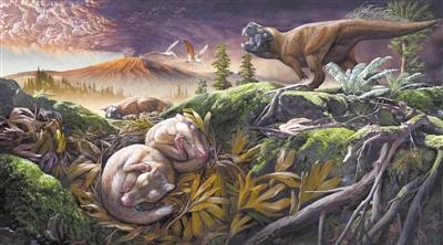 """1.24億年前的一次""""分手"""",讓哺乳動物吃得更香"""
