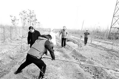 公益组织举报线索 拆除捕鸟网