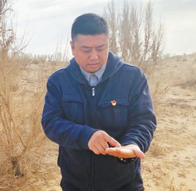 他从编代码到治黄沙 12年来种下近4万亩梭
