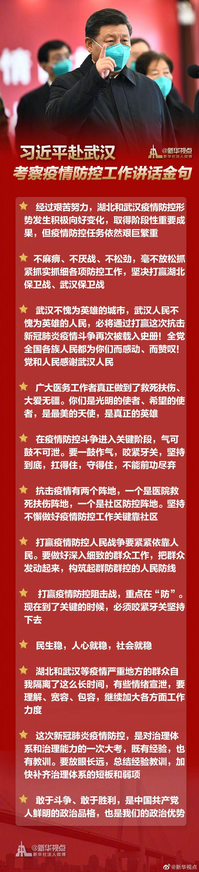 习近平赴武汉考察疫情防控工作讲话金句