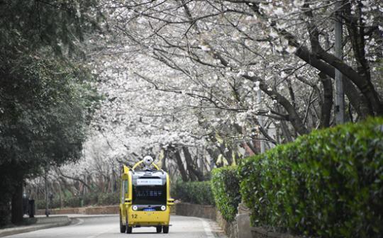 """我在""""云""""上 看春暖花开"""