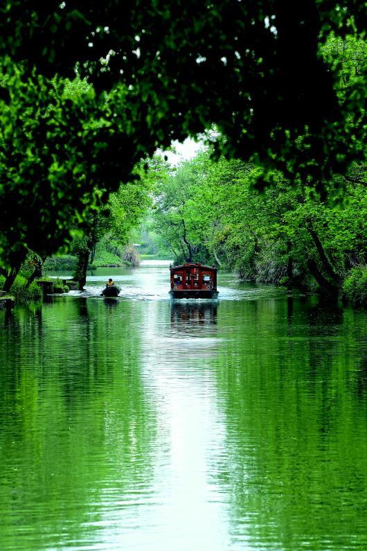 """""""天堂绿肺""""养成记 西溪湿地:从污水横流到都会生态建设标杆"""