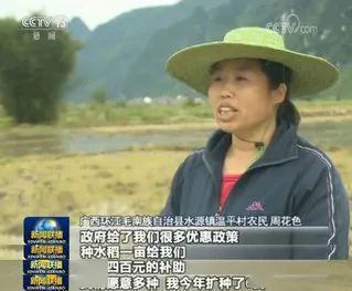 百事娱乐:我国粮食供应紧张?再来一波