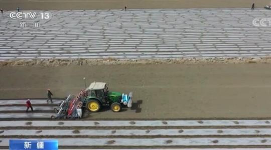 新疆:千万亩商品棉全面开耕播种 确保棉田春播不受影响