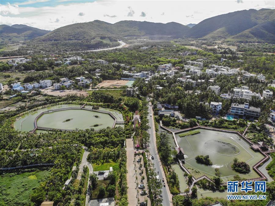 """(热点鲜报·走向我们的小康生活·图文互动)(1)南海之滨,这个小黎村如何""""变身""""网红民宿村?"""