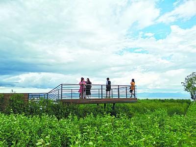 青山间的抚仙湖,生态好了水也美了