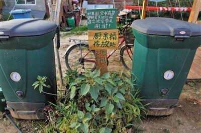 7位陪读妈妈探索村庄垃圾分类
