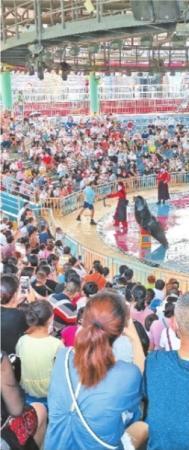 免票首日武汉景区人气高 黄鹤楼等景区客流量跳涨3倍