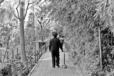 北京:西城区将建99条慢行林荫示范路