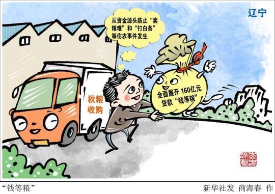 """(图表·漫画)[经济]""""钱等粮"""""""