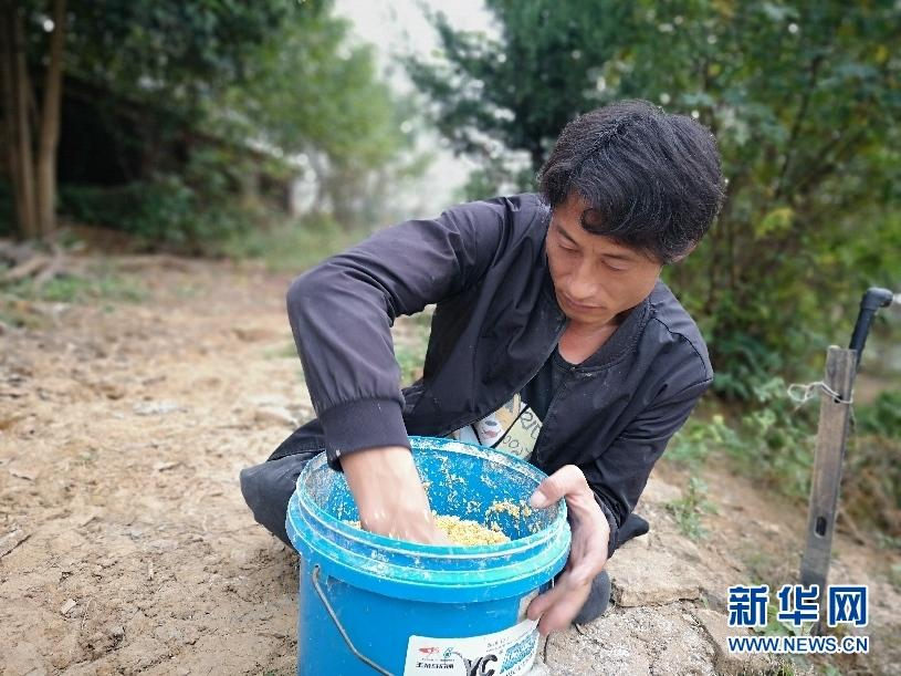 http://www.tianguangxu.com.cn/jingji/167497.html