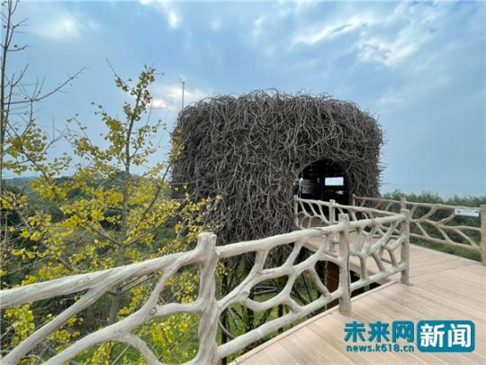 """江西吴城候鸟小镇:唱响""""候鸟经济""""之歌 摹绘"""
