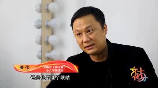 黄梅戏《鸭儿嫂》:皖南脱贫记 唱出新生活插图