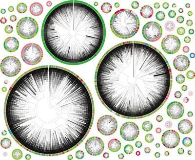 """""""基因魔术剪刀""""在每个癌细胞上都有独特的标记(图1)"""
