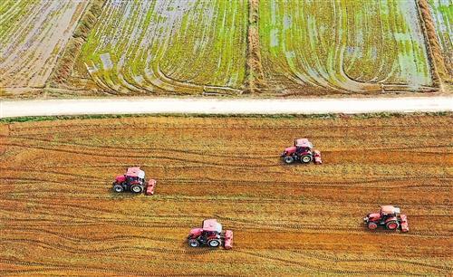 """各地抢抓农时春播春种,一幅幅""""春耕备耕图""""展现在田间地头"""