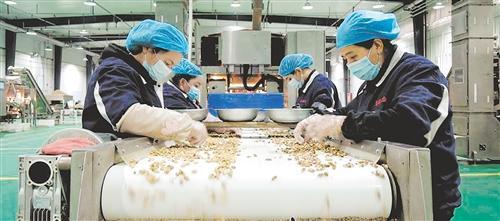 """如何突破收益""""天花板""""——新疆林果业提质"""