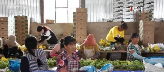 """""""十三五""""期间农民收入年均实际增长6% 务工收入贡献率达41.6%"""