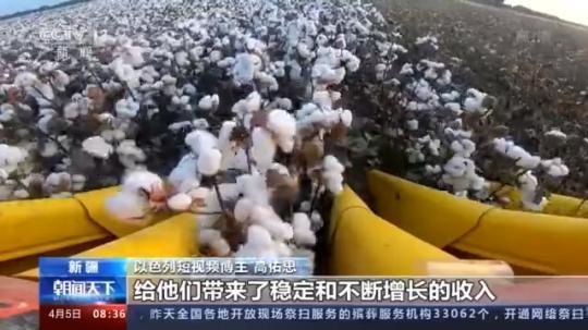 以色列博主感叹新疆当地人民的幸福生活,棉花产业非常有趣