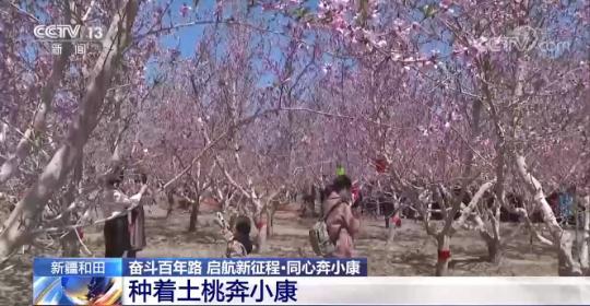新疆和田:种着土桃奔小康