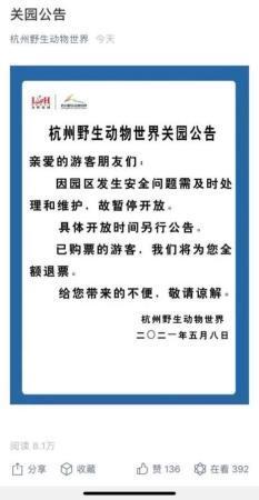 """陈小春电影动物园瞒报金钱豹外逃,""""瞒豹""""之患猛于豹"""