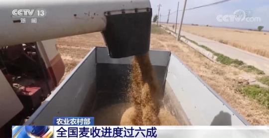 农业农村部:全国麦收进度过六成 机收比例超98%