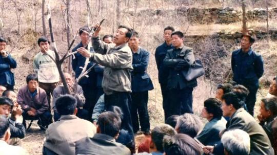 李保国:扎根太行山的农民教授