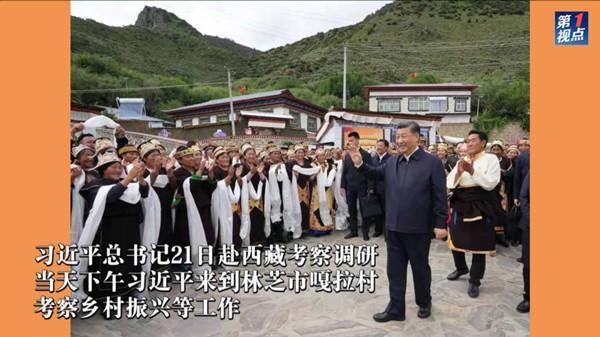 藏乡看振兴