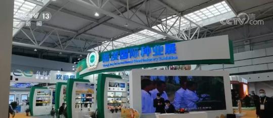 第28届杨凌农高会聚焦新技术应用