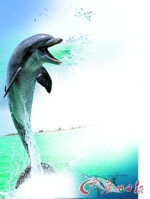 海豚思维导图手绘
