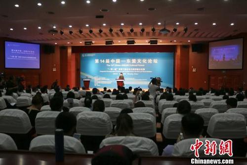 图为第14届中国—东盟文化论坛。 林馨 摄