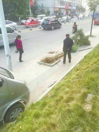 河南一卫生院院长驾车撞倒母子轧死婴儿后逃逸(图)