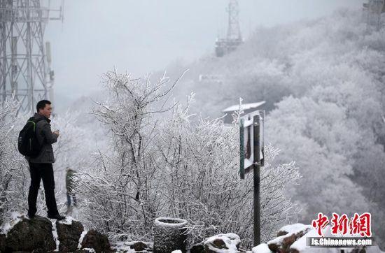 """南京新年首场雪""""低调""""降临"""