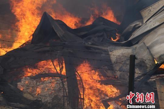 济南伊利乳业过火面积达四千余平米 护林飞机灭火