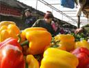 年货菜市场供应充足