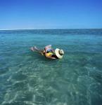 蜜月地引猜测 下海寻浪漫?