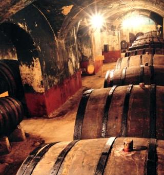 张裕百年地下大酒窖
