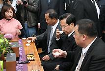 苏树林参访台湾冻顶乌龙茶乡