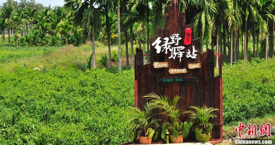 """寻""""味""""海南博鳌乡村公园"""