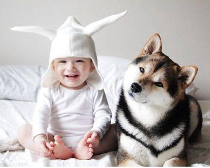 宝宝与柴犬生活萌照融化人心