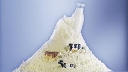 奶粉营养成分严重不达标追刑责
