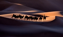 《沙海行舟》 摄影:康锐平