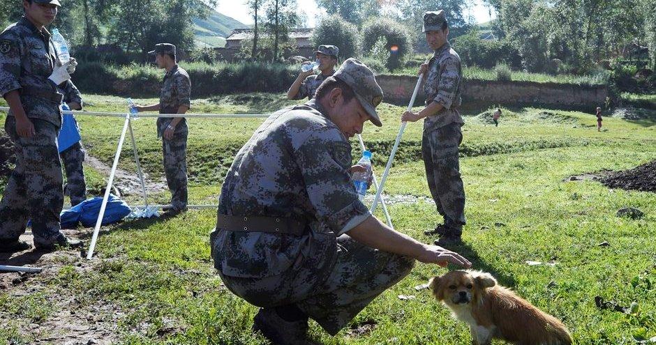 解放军战士安抚灾区小动物