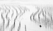 《水墨画沙江》 摄影:马克温