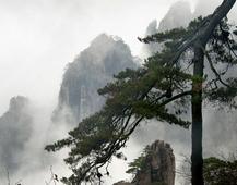 《大美黄山》 摄影:丁虹