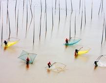 《滩涂韵律》 摄影:张小平
